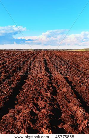 Autumn treatment fields provides earlier spring the ripening of the soil the intensification of biological processes as well as the rapid germination of weeds. In the spring requires only a small presowing treatment of the soil which retains moisture and