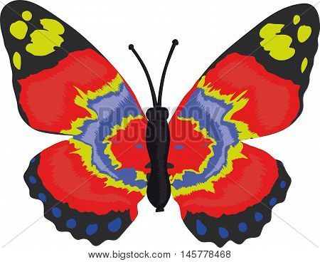 Sweet Red Butterfly Vector, illustration hand drawing