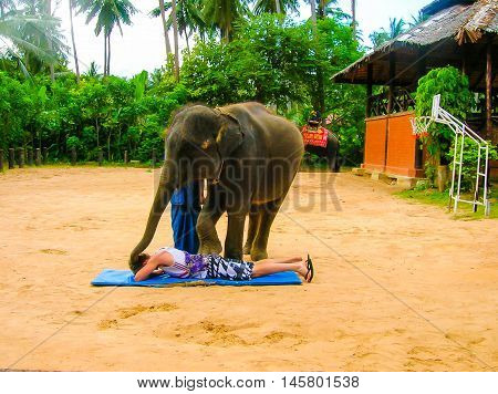 Koh Samui, Thailand - June 21, 2008: The young elephant doing tricks in Thailand