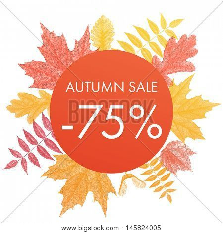 Autumn sale 75% off circle banner. Vector discount offer with autumnal red maple, orange oak, yellow rowan foliage on white background.