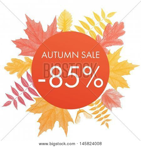 Autumn sale 85% off circle banner. Vector discount offer with autumnal red maple, orange oak, yellow rowan foliage on white background.
