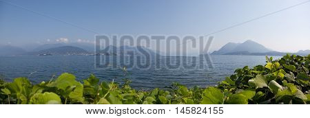Panorama lago maggiore with green plants in the front with hills and mist.