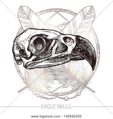 Sketch Eagle Skull. Trendy Hand Drawn Illustration