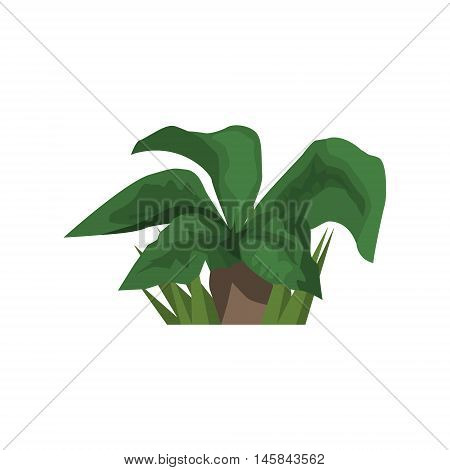 Big Leaf Tropical Plant Jungle Landscape Element. Simple Tropical Forest Object Illustration Isolated On White Background.
