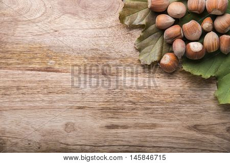 group of hazel above to green leaf on wood