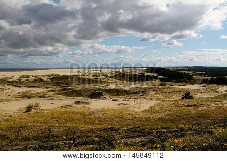 Woods and dunes of the Curonian Spit
