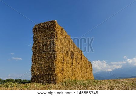 Straw or hay stacked in a field after harvesting in the sunset light