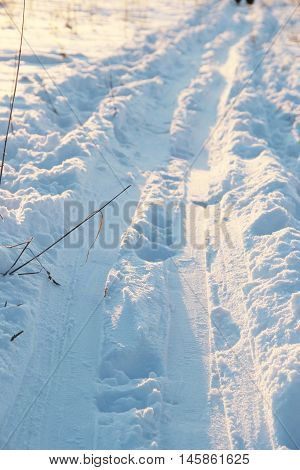 trails for cross-country skiing in the snow in a field