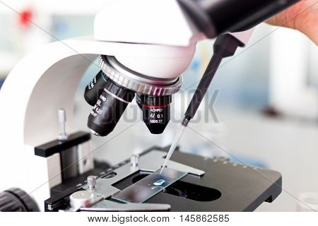 Study with a microscope in biology laboratories scientific activity biological microscope