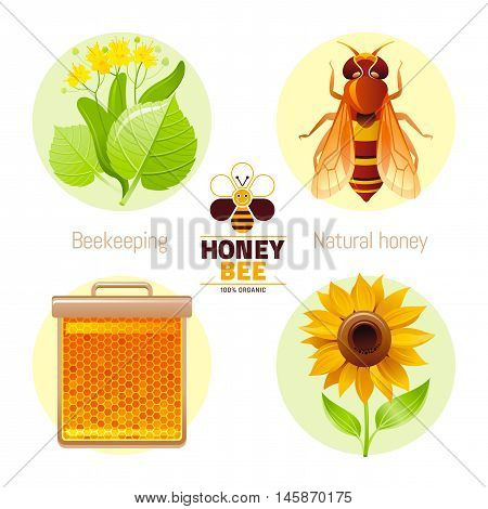 Bee honey icon set with cartoon flat icons - honeybee logo, linden, insect queen, honeycomb frame, sunflower. White background. Modern elegant beekeeping food concept template vector illustration