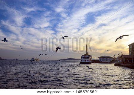 Istanbul Turkey. Sea of Marmara the Bosphorus in the evening. sunset seagulls and people. Istanbul Besiktas pier appears.