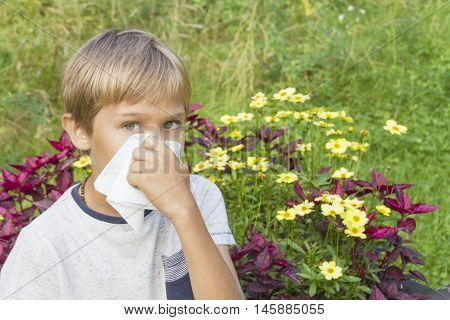 Healthcare, medicine, allergy concept. Child is blowing his nose. Flowers and green meadow behind him