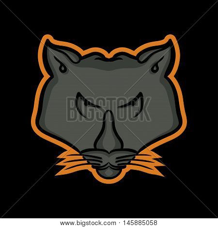 Panther Mascot, Panther Logo Concept, Panther icon
