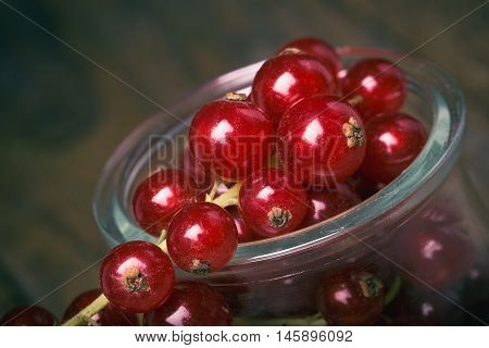 Detail Bunch Of Red Currants In A Glass Cup.