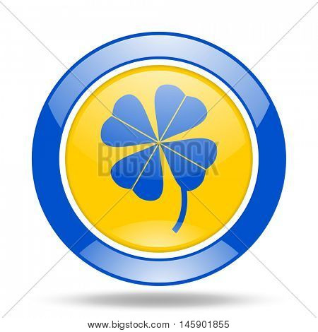 four-leaf clover round glossy blue and yellow web icon