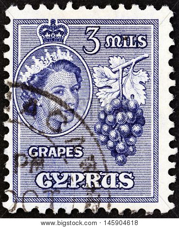 CYPRUS - CIRCA 1955: A stamp printed in Cyprus shows grapes and Queen Elizabeth II, circa 1955.