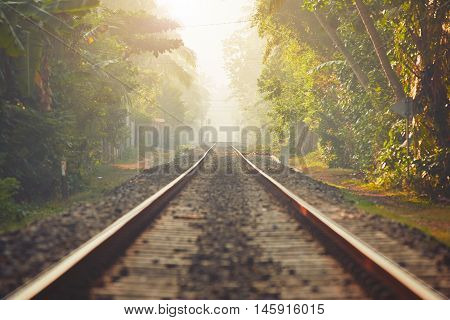 Foggy morning in Sri Lanka. Railroad track through the jungle and villages.