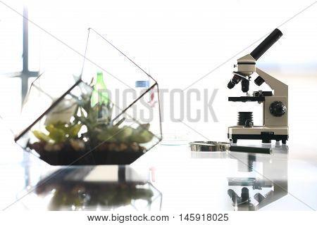 Laboratory biotechnology, microscope Workshop laboratory microscope stands on a glass countertop