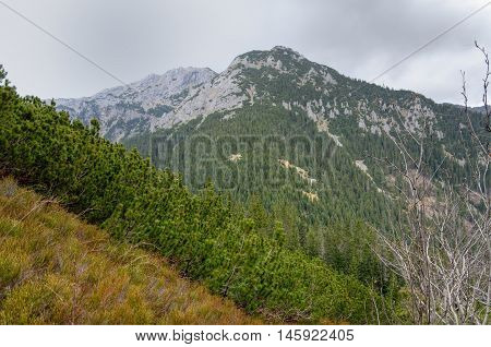 Spring cloudy mountain landscape. Mountain rocky peak in the clouds in Western Tatra Poland.