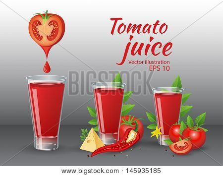 Vector vegetable illustration. Tomatoes and glass of fresh tomato juice with cheese chily parsley and tomato leaves on dark background