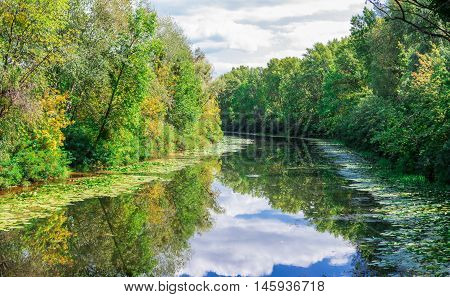 Sunny landscape of river greenwood forest and cloudy sky reflected in water