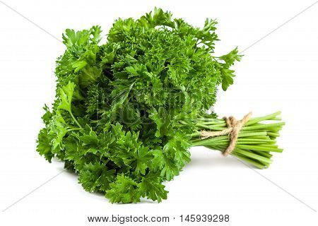 Bunch fresh parsley isolated on white background.