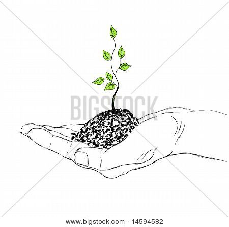 Hand And Sapling
