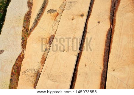 Set of Stacked wood pine timber for construction buildings and furniture production