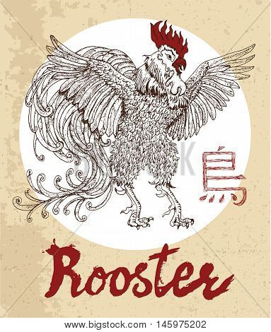 Chinese zodiac symbol of hand drawn Rooster with lettering. Horoscope and astrological vector sign of asian new year calendar. Graphic drawing with engraved animal. Chinese hieroglyph means Rooster