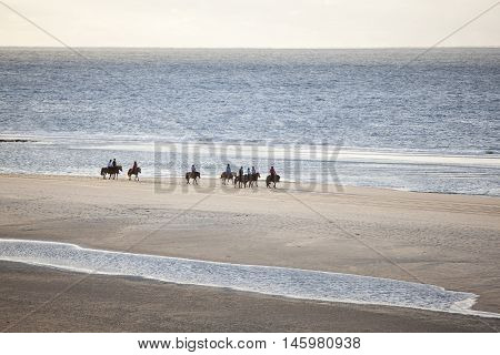 girls on icelandic horses on north sea beach of dutch island vlieland