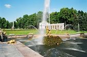 image of samson  - peterhof - JPG