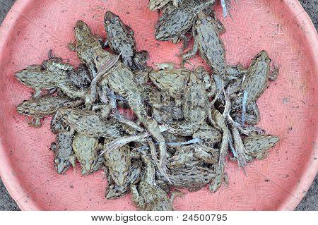 Closeup of frogs at asian market