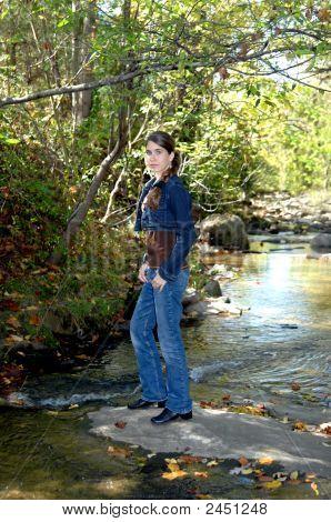 erforschen einen Wald stream