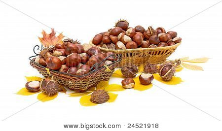 Autumn Still Life - Mature Chestnuts In Wicker Baskets.