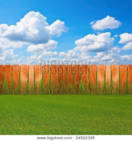 Green grass in Garden