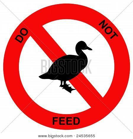 Forbidden ducks