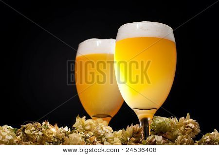 Two Glasses Of Beer With Hop