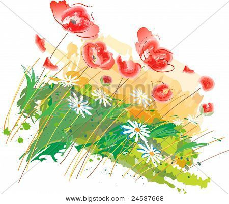 Poppies and wild flowers