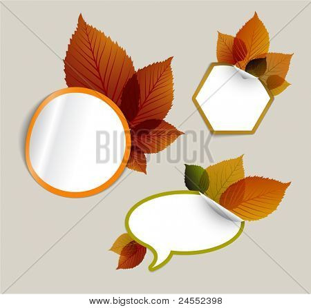 Set of vector autumn discount tickets, labels, stamps, stickers with colorful leafs