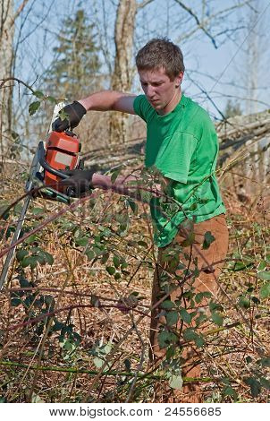 Young Man Clearing Brush With Chainsaw