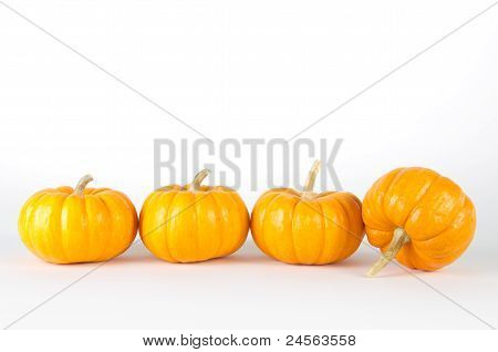 Mini-pumpkins isolated on white