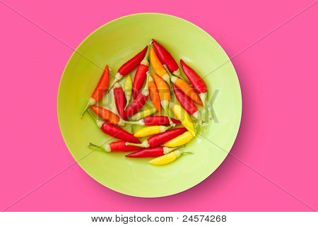 colorful chili peppers plate isolated on pink background