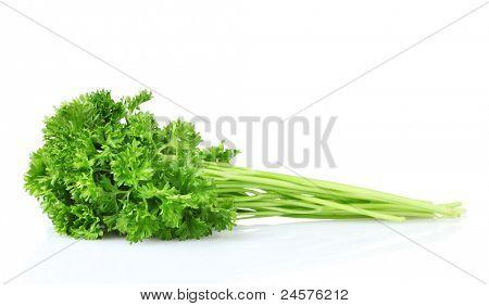 beautiful parsley isolated on white