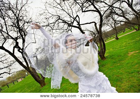 Beautiful Bride With Veil In Wedding Walk