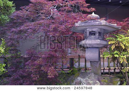 Japanese Stone Garden