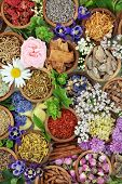 Herbal medicine background with flowers and herbs used in natural alternative and homoeopathic remed poster
