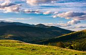 Beautiful Mountain Landscape In Afternoon. Grassy Meadow And Forested Hills Of Carpathian Mountains. poster