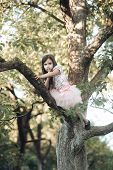 Activity, Little Girl Climb Tree In Summer Garden. Activity, Active Childhood, Lifestyle poster
