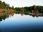 picture of sand lilies  - rays evening sun illuminate poles broken old bridge - JPG