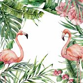 Watercolor Exotic Card With Flamingo. Hand Painted Floral Illustration With Banana And Coconut Palm  poster